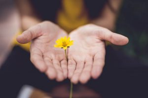 embrace, silence, mindfulness, silent retreat